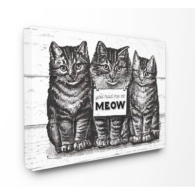'You Had Me At Meow Cats' Graphic Art Print on Wood Format: Wrapped Canvas, Size: 16