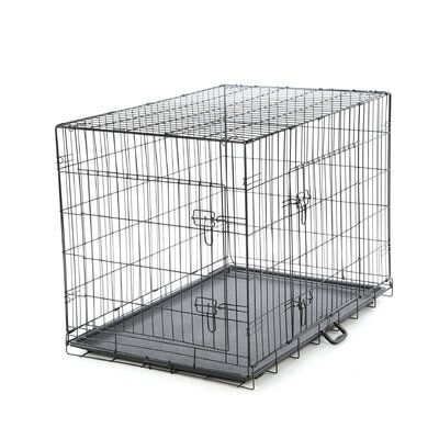 Foldable 2 Door Pet Crate Size: Large (31 H X 28 W X 42 L )