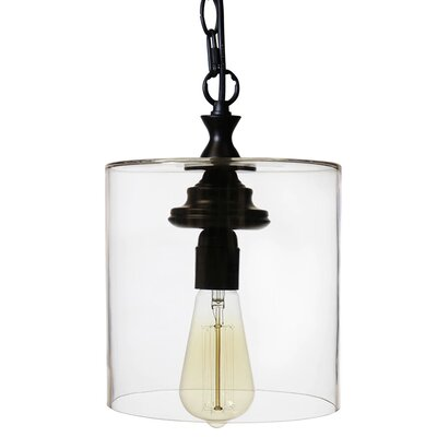 Zylstra 1-Light Mini Pendant