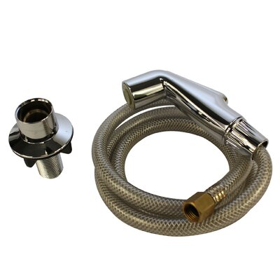 Spray Head and Hose Assy