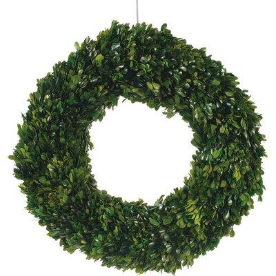 Preserved Boxwood Wreath Size: Large