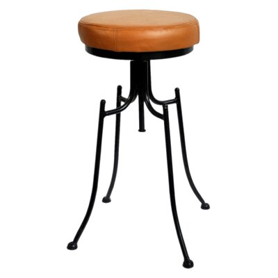 Grayville 24 Bar Stool Upholstery: Brown