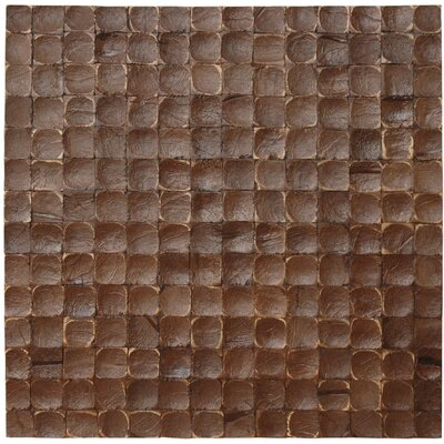 Coconut Mosaic Tile in Espresso Luster