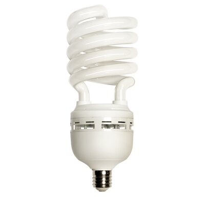 65W 120-Volt Fluorescent Light Bulb Bulb Color Temperature: 2700K