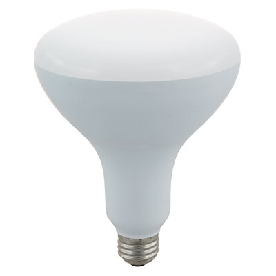 65W LED Light Bulb (Pack of 4)