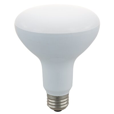 45W LED Light Bulb (Pack of 4)
