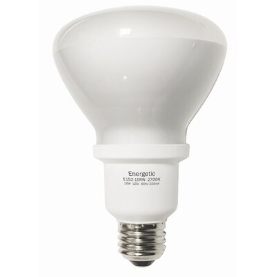 15W Fluorescent Light Bulb Bulb Color Temperature: 2700K