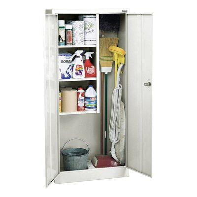 30 x 66 Recessed Medicine Cabinet Finish: White