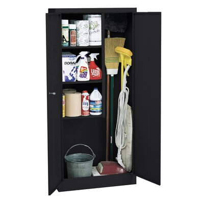 30 x 66 Recessed Medicine Cabinet Finish: Black