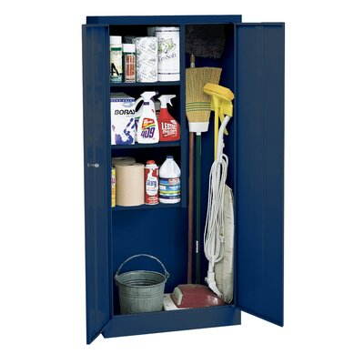 30 x 66 Recessed Medicine Cabinet Finish: Blue
