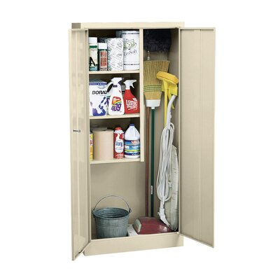 36 x 72 Recessed Medicine Cabinet Finish: Putty