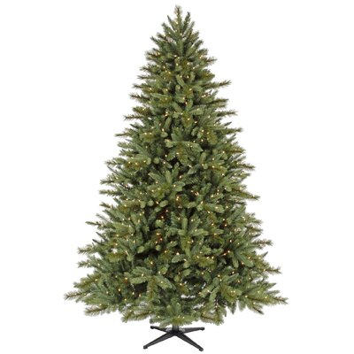 Tannenbaum 6' Christmas Tree with 450 Lights and Stand XV19366L.GR