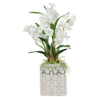 Vanda Orchids Floral Arrangement in Planter SDP224-WH