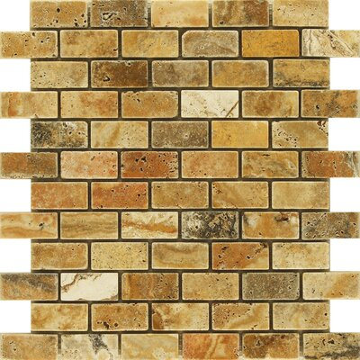Scabos 1 x 2 Travertine Mosaic Tile in Multi