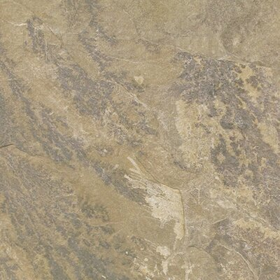 12 x 12 Porcelain Field Tile in Brown