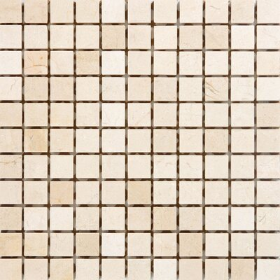 1 x 1 Marble Mosaic Tile in Crema Cappuccino