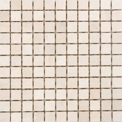 1 x 1 Marble Mosaic Tile in Unpolished Crema marfil