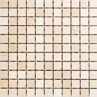 1 x 1 Marble Mosaic Tile in Polished Crema marfil