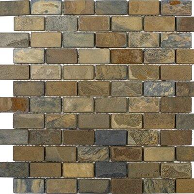 1 x 2 Slate Mosaic Tile in California Rustic