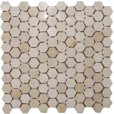 Hexagon 1 x 1 Marble Mosaic Tile in Crema Marfil