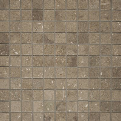 1 x 1 Limestone Mosaic Tile in Seagrass