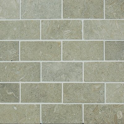 1 x 2  Limestone Mosaic Tile in Seagrass