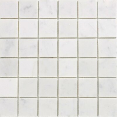 2 x 2 Marble Mosaic Tile in Polished White