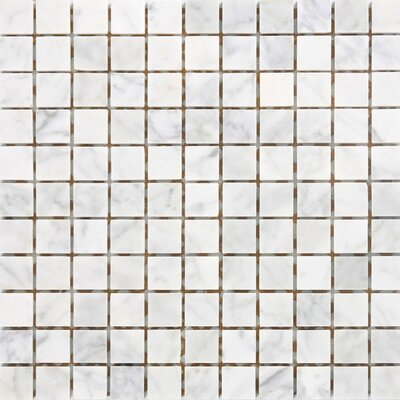 1 x 1 Marble Mosaic Tile in White