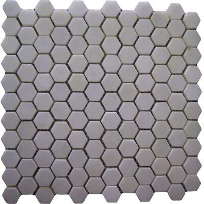 Thassos Hexagon 1 x 1 Marble Mosaic Tile in White