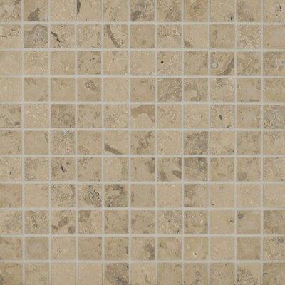 Jura 1 x 1 Limestone Mosaic Tile in Honed Grey