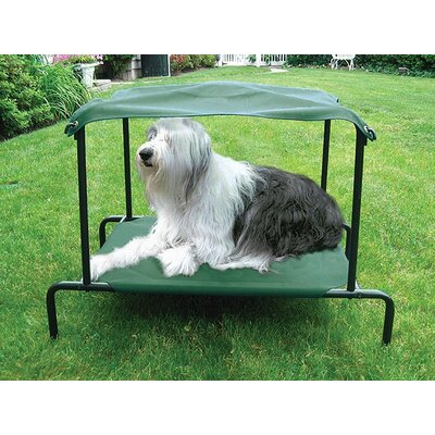 Elevated Breezy Bed� Outdoor Dog Size: Medium (25 L x 20 W)