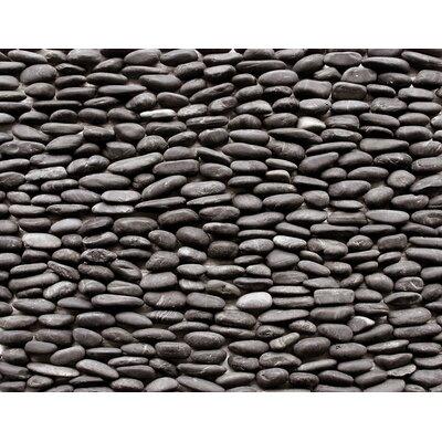 Standing Random Sized Natural Stone Pebble Tile in Lamina