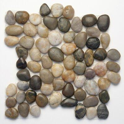 Decorative Random Sized Natural Stone Pebble Tile in Rumi