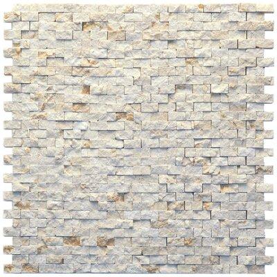 Modern 0.5 x 0.75 Marble Splitface in Still Life