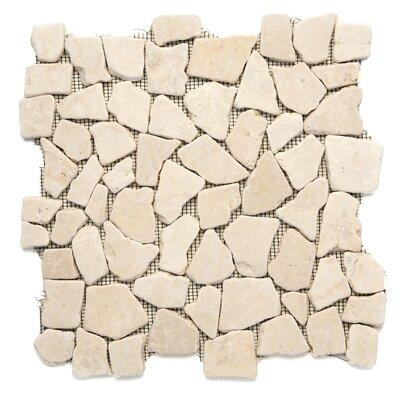 Decorative Pebbles Random Sized Natural Stone Pebble Tile in Jakarta Moon