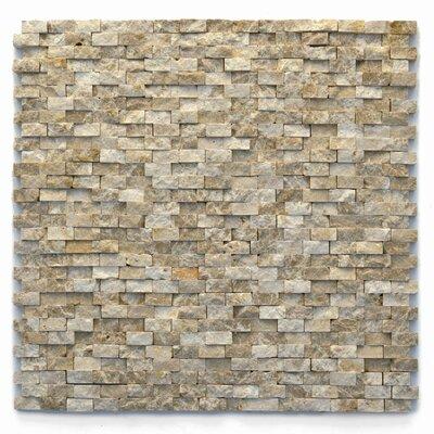 Modern 0.5 x 0.75 Marble Splitface in Dada