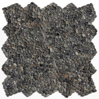 Decorative Pebbles Random Sized Natural Stone Pebble Tile in Barbados Black