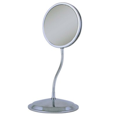 Goose Neck Vanity and Wall Mirror FG60