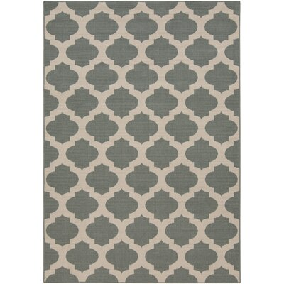 Alfresco Pewter Outdoor Area Rug Rug Size: 109 x 76