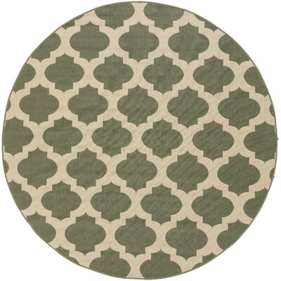 Alfresco Pewter Outdoor Area Rug Rug Size: Round 89 x 89