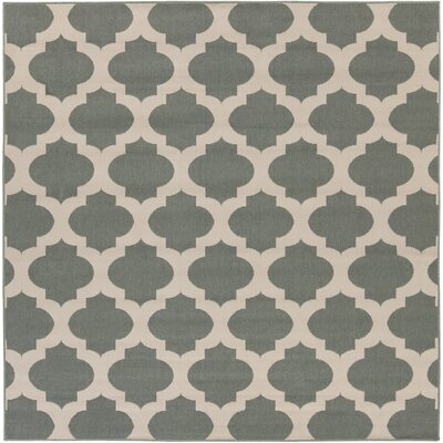 Pewter Outdoor Area Rug Rug Size: Square 73