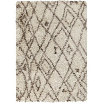 Sina Hand Woven Bone Area Rug Rug Size: Rectangle 9 x 12