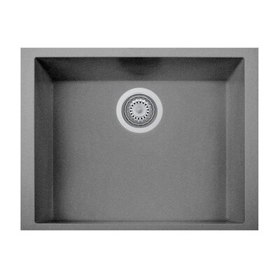 23 x 8 Undermount Kitchen Sink Finish: Titanium