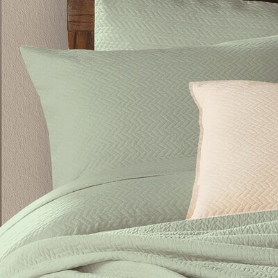 Delaney Cotton Sham Color: Seafoam, Size: King