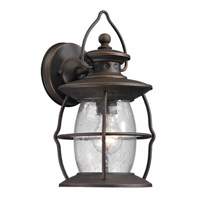 Village Lantern 1-Light Outdoor Wall Lantern