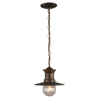 Maritime 1-Light Outdoor Pendant