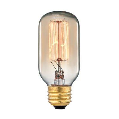 Vintage Filament Light Bulb 1102
