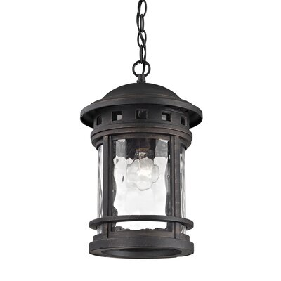 Binette 1-Light Outdoor Pendant