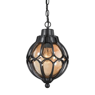 Madagascar 1-Light Outdoor Pendant