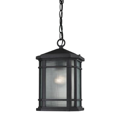 Lowell 1-Light Outdoor Pendant